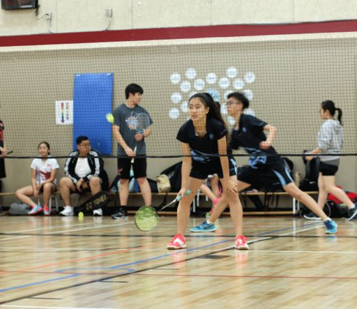 Badminton Season Wrap-Up: Championships and Congratulations